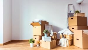 Packers and Movers Domlur Bangalore