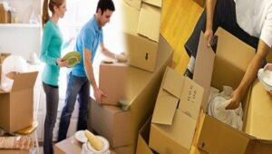 Packers and Movers Electronic City Bangalore