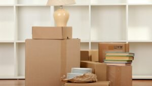 Packers and Movers Hoodi Bangalore