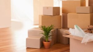 Packers and Movers in Marathahalli Bangalore