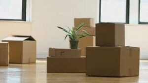 Packers and Movers Wilson Garden Bangalore