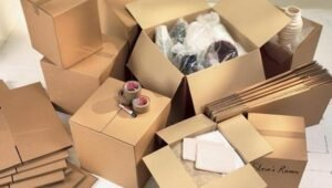Packers and Movers Ananth Nagar Bangalore