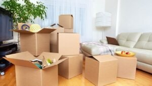 Packers and Movers Jakkur Bangalore