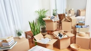 Packers and Movers Murphy Town Bangalore