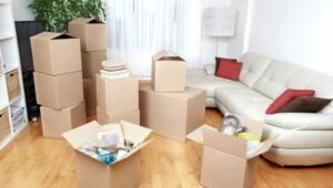 Packers and Movers Sanjaynagar Bangalore
