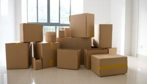 Packers and Movers SG Palya Bangalore