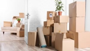 Packers and Movers Vyalikaval Bangalore